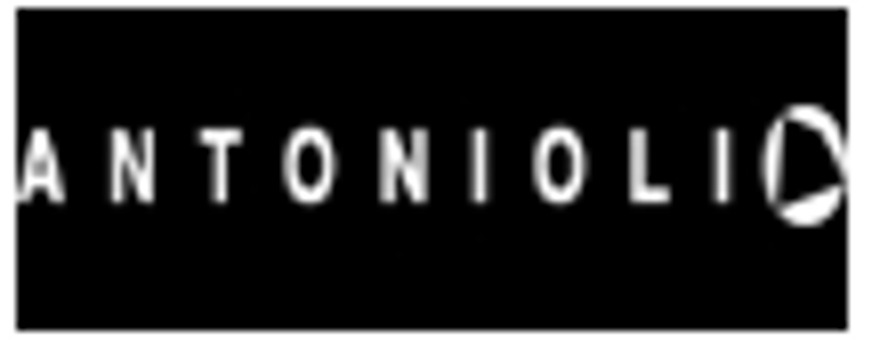 Antonioli Coupon Codes