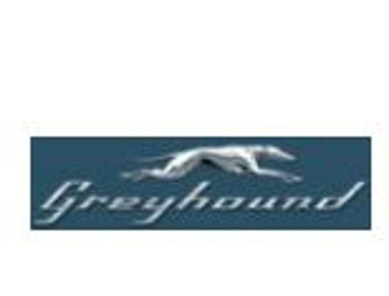 Promo Code Greyhound Usa